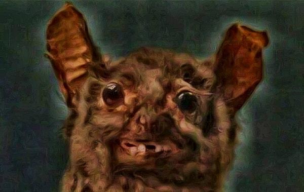 bat-face2
