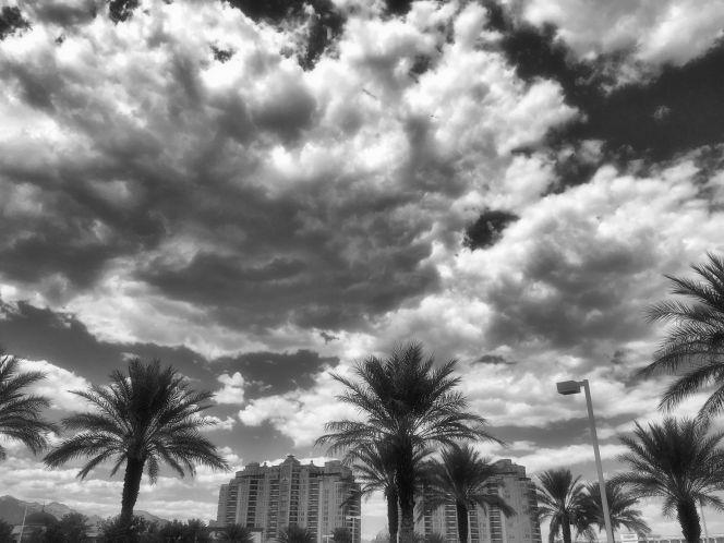 Hotel-Palms