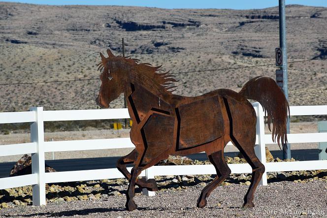 steelhorse2