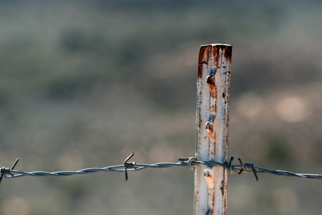 sharp-rust